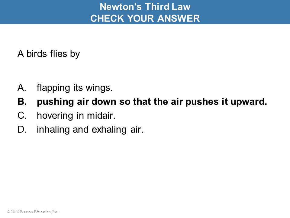 Newton's Third Law CHECK YOUR ANSWER