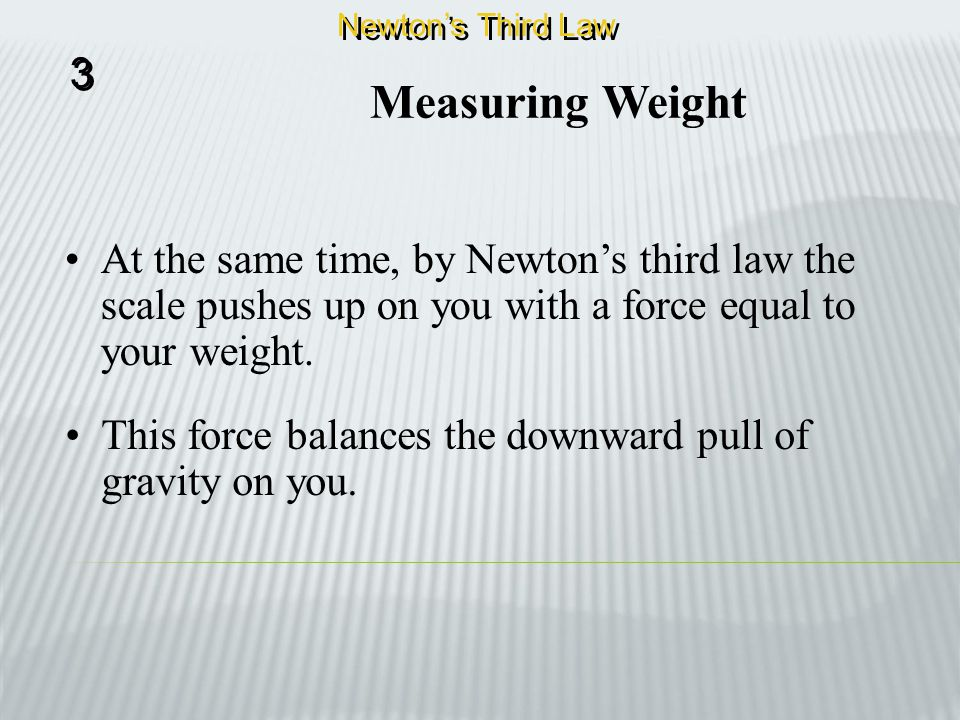 Newton's Third Law 3. Measuring Weight. At the same time, by Newton's third law the scale pushes up on you with a force equal to your weight.