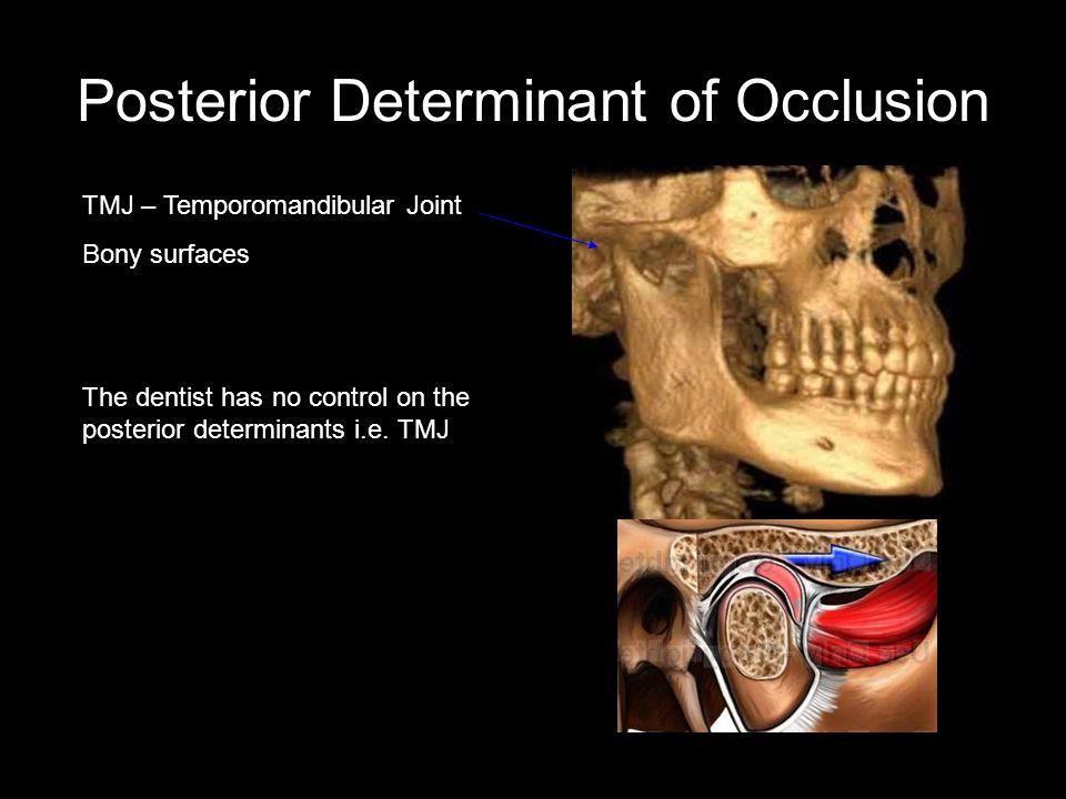 Posterior Determinant of Occlusion