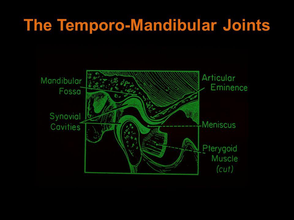 The Temporo-Mandibular Joints