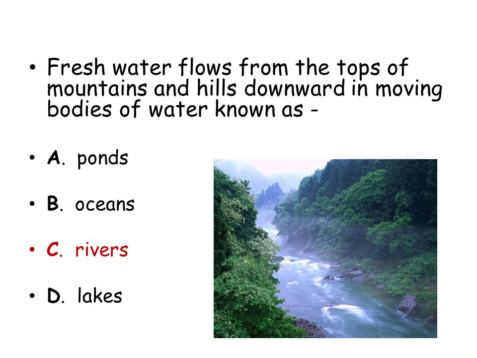 Fresh water flows from the tops of mountains and hills downward in moving bodies of water known as -