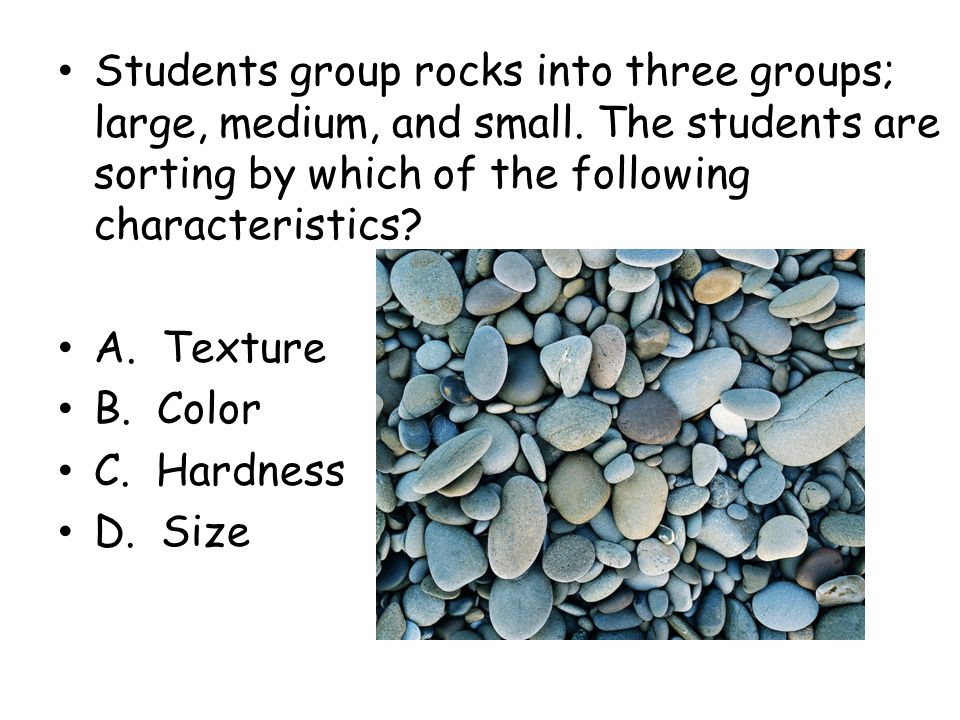 Students group rocks into three groups; large, medium, and small
