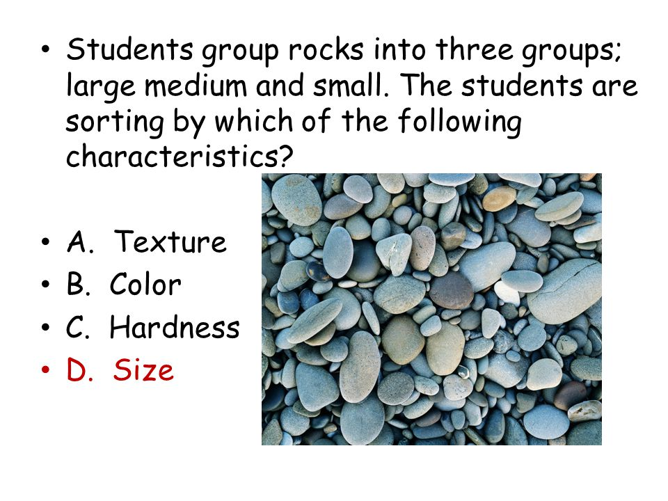 Students group rocks into three groups; large medium and small