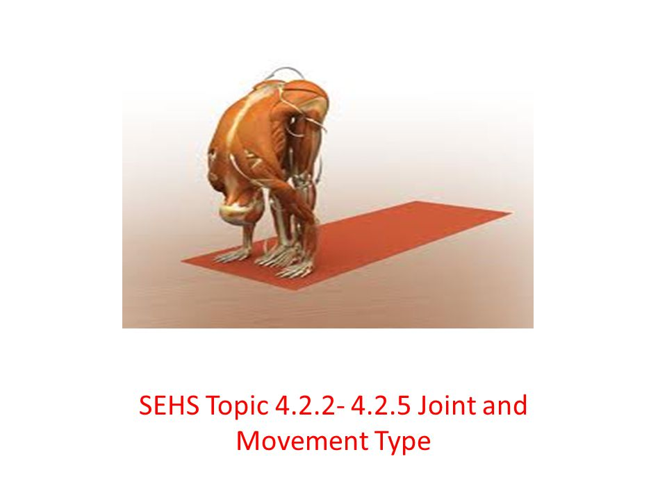 SEHS Topic 4.2.2- 4.2.5 Joint and Movement Type