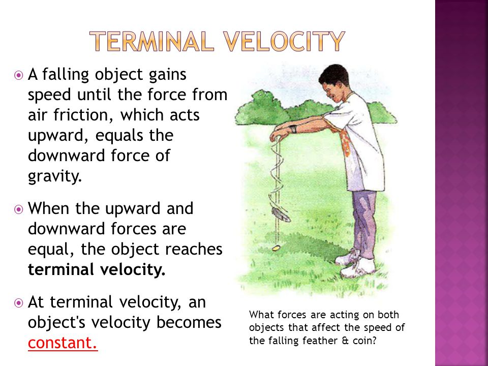 terminal velocity A falling object gains speed until the force from air friction, which acts upward, equals the downward force of gravity.