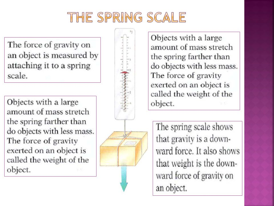 The spring scale