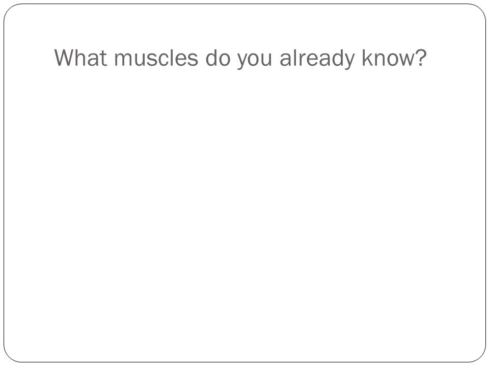 What muscles do you already know