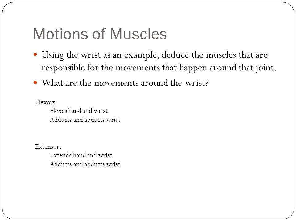 Motions of Muscles Using the wrist as an example, deduce the muscles that are responsible for the movements that happen around that joint.
