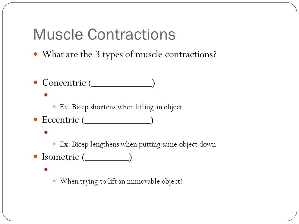 Muscle Contractions What are the 3 types of muscle contractions