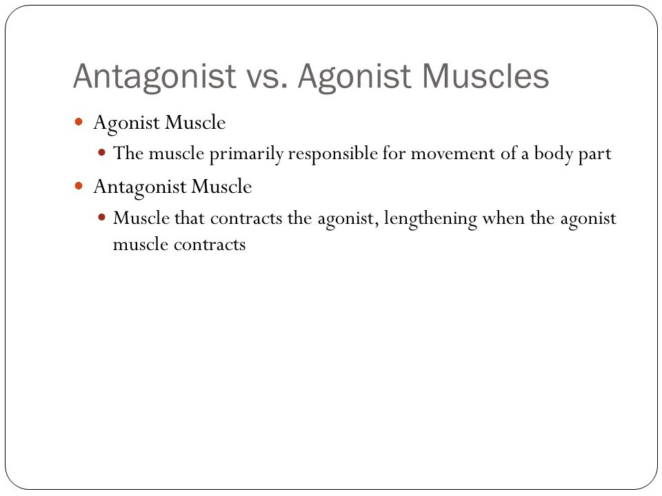 Antagonist vs. Agonist Muscles