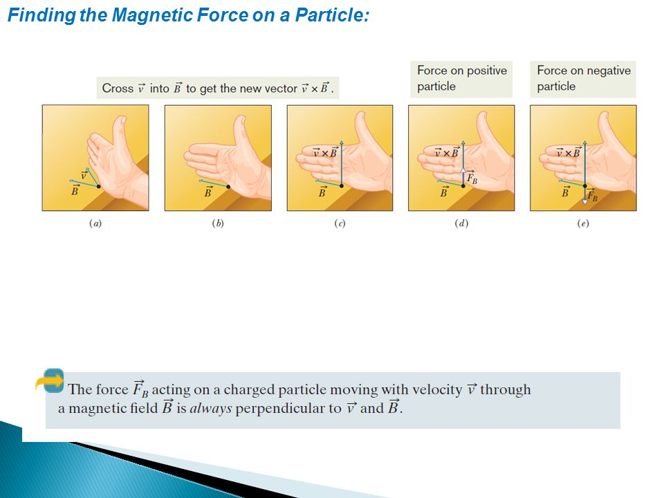 Finding the Magnetic Force on a Particle:
