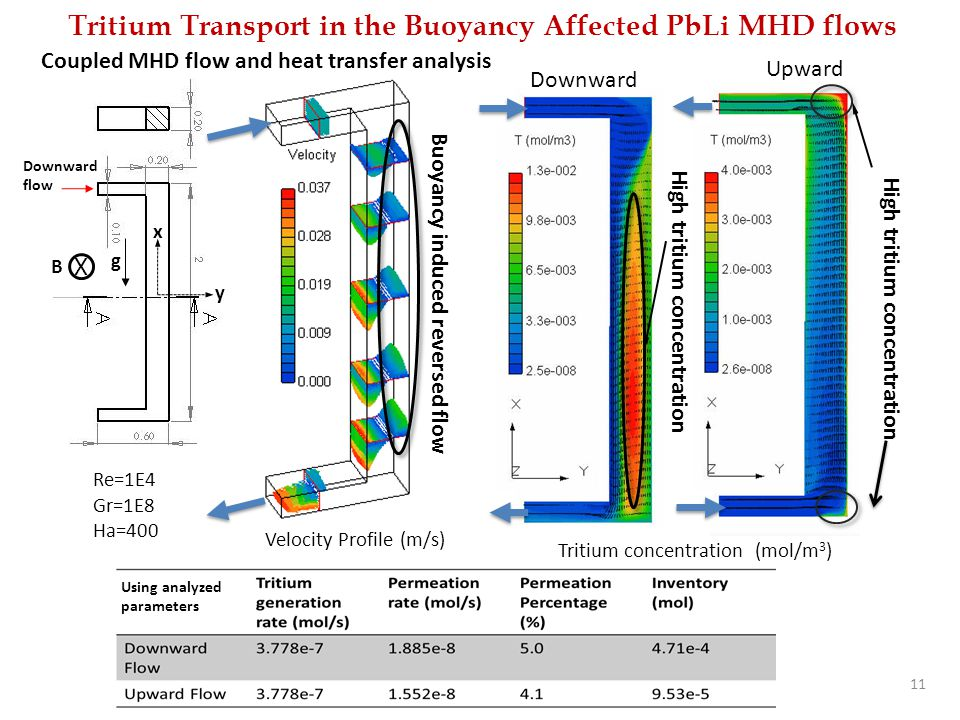 Tritium Transport in the Buoyancy Affected PbLi MHD flows