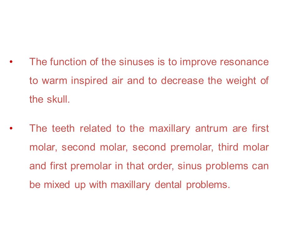 The function of the sinuses is to improve resonance to warm inspired air and to decrease the weight of the skull.