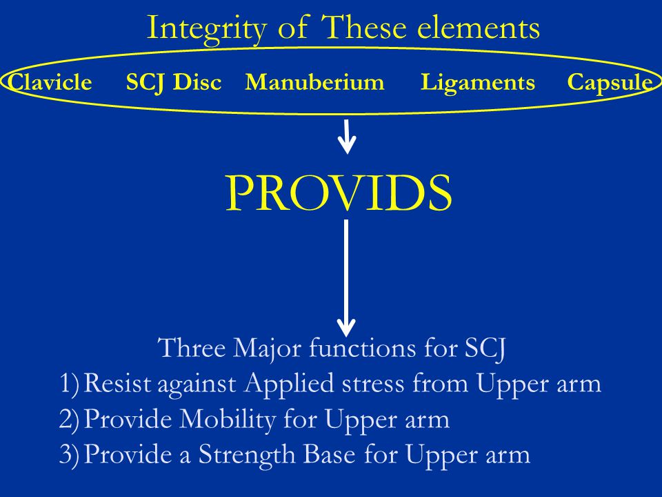 Three Major functions for SCJ