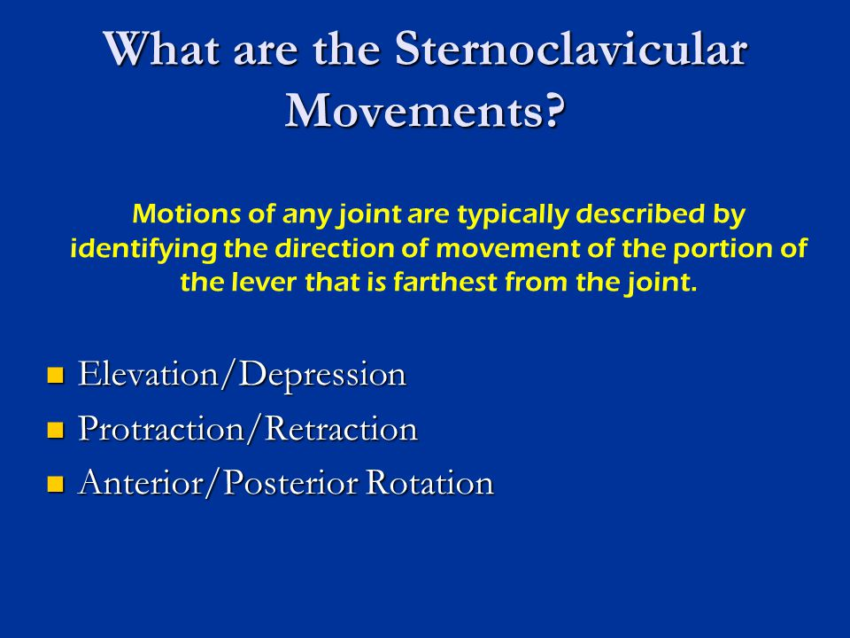 What are the Sternoclavicular Movements