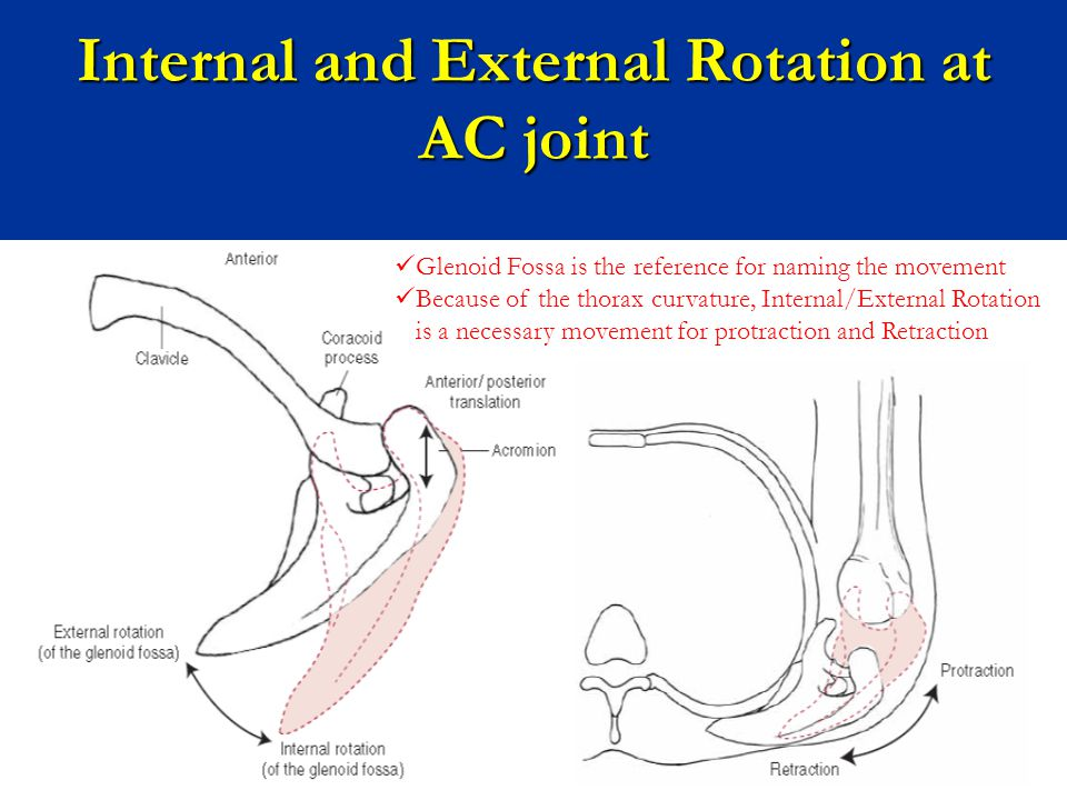Internal and External Rotation at AC joint