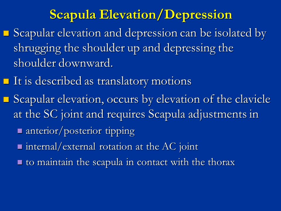 Scapula Elevation/Depression