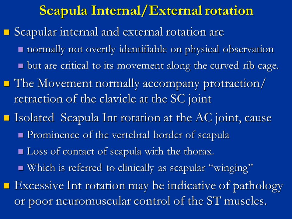 Scapula Internal/External rotation
