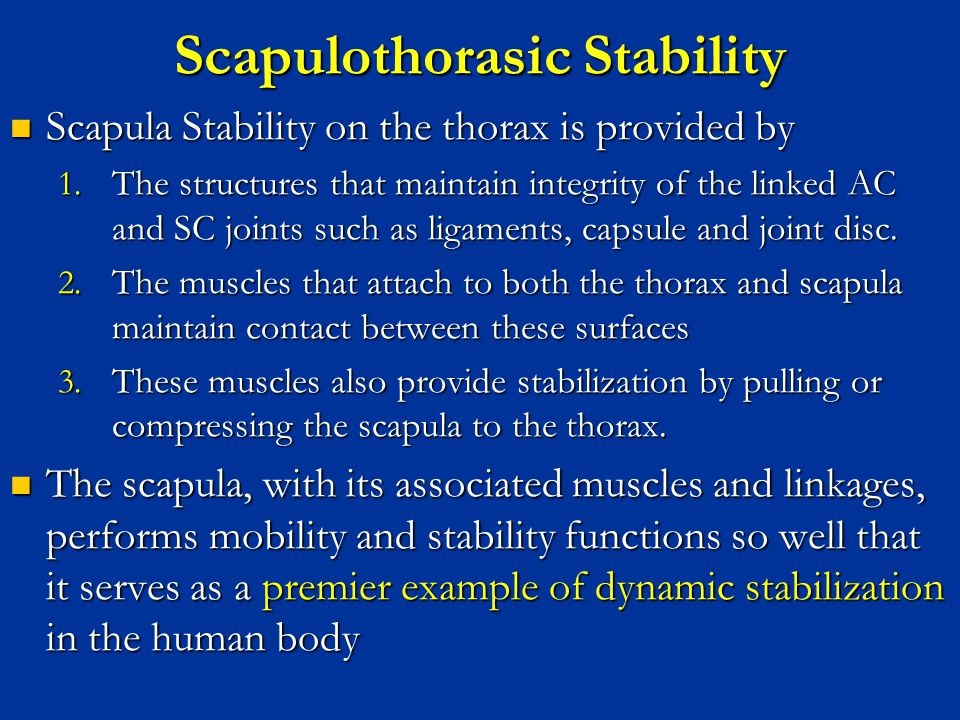 Scapulothorasic Stability