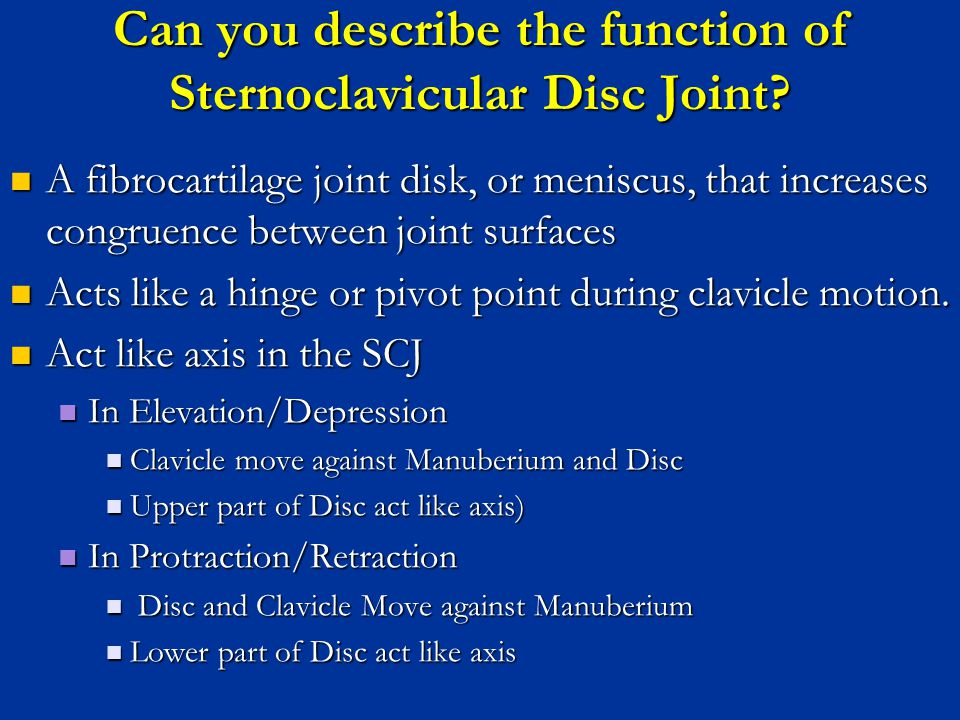Can you describe the function of Sternoclavicular Disc Joint