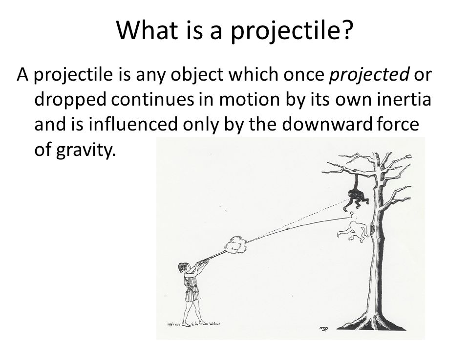 What is a projectile