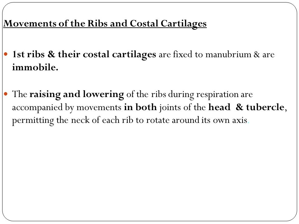 Movements of the Ribs and Costal Cartilages