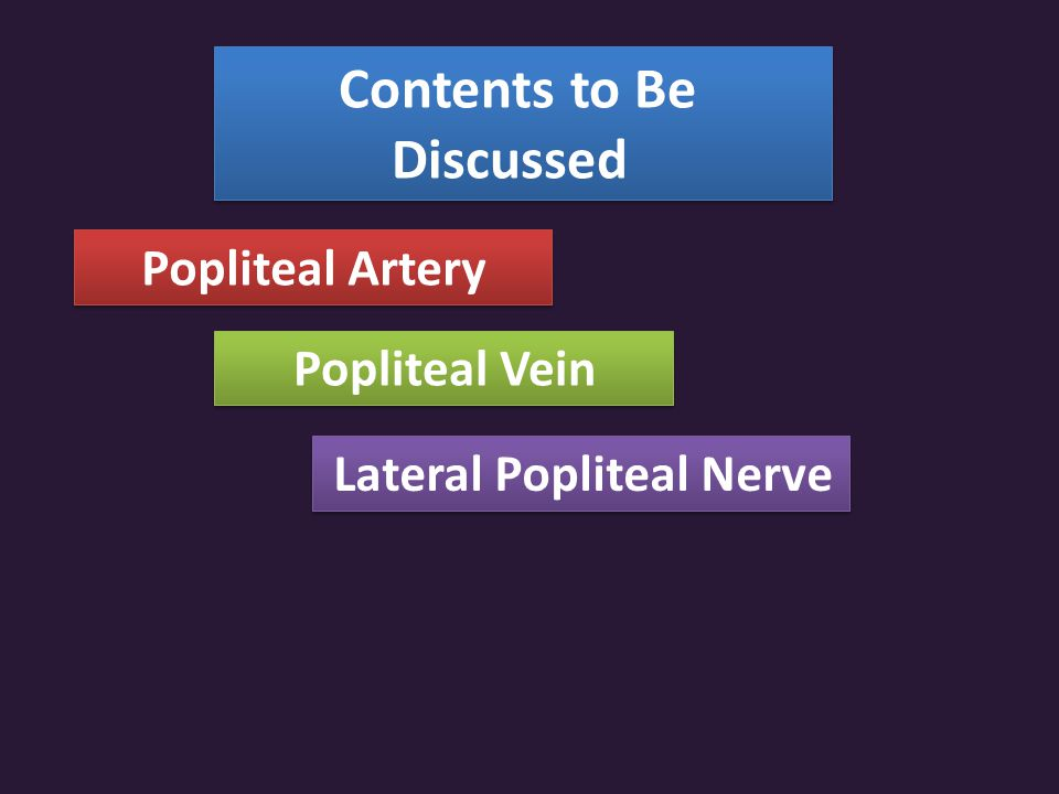 Contents to Be Discussed Lateral Popliteal Nerve