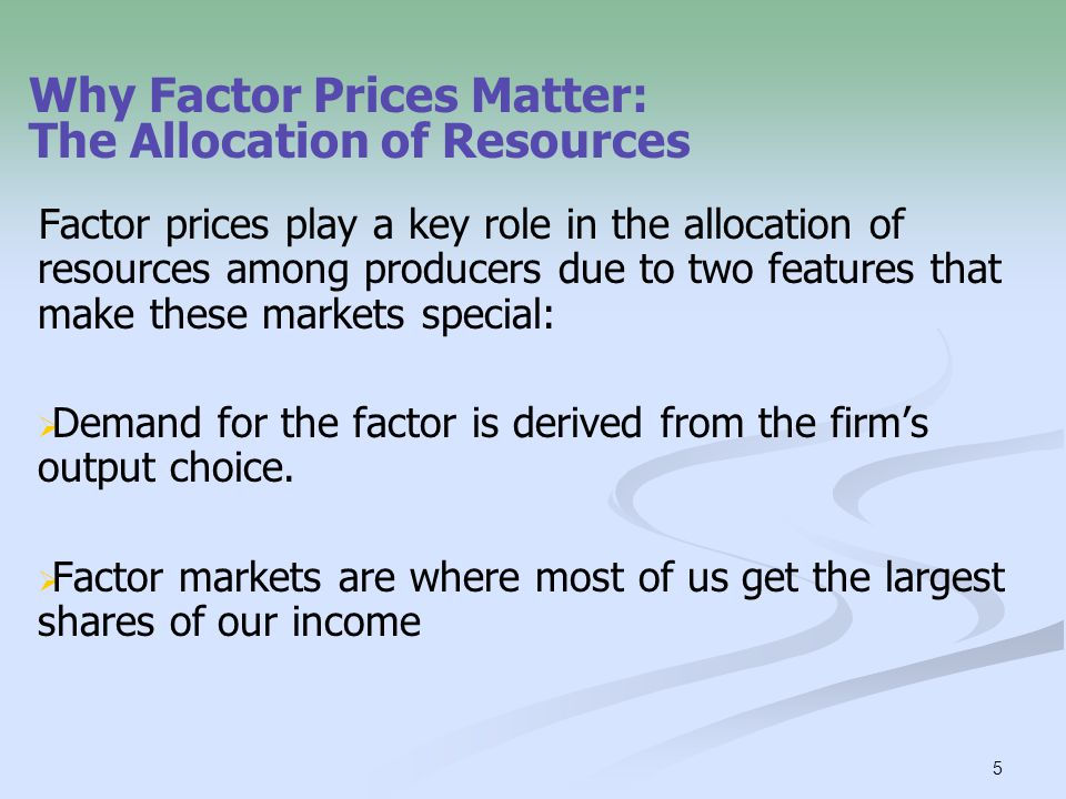 Why Factor Prices Matter: The Allocation of Resources