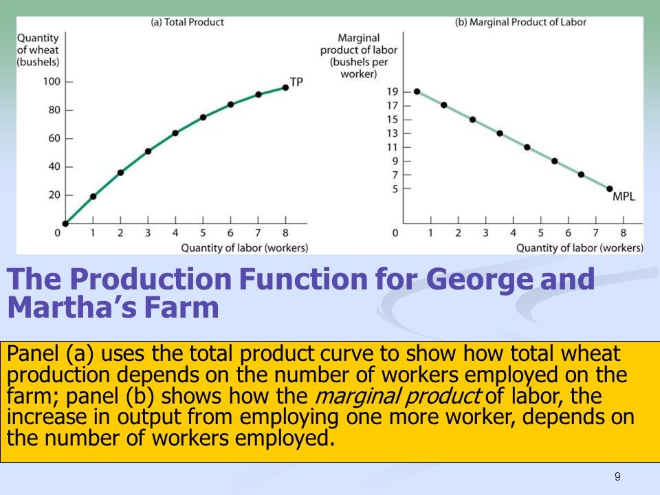 The Production Function for George and Martha's Farm