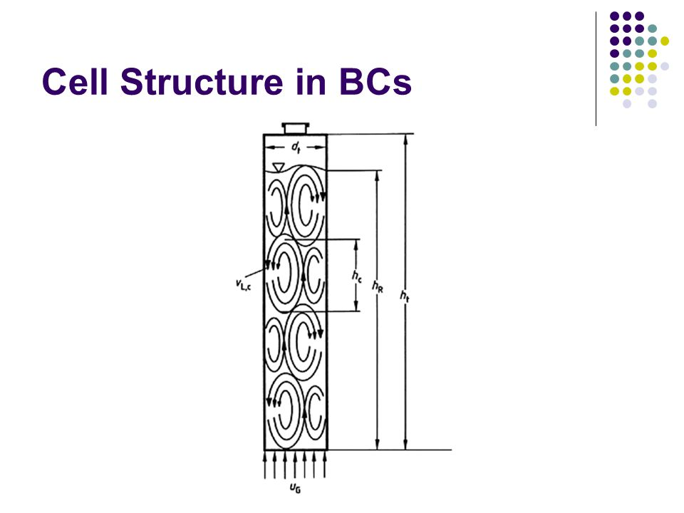 Cell Structure in BCs