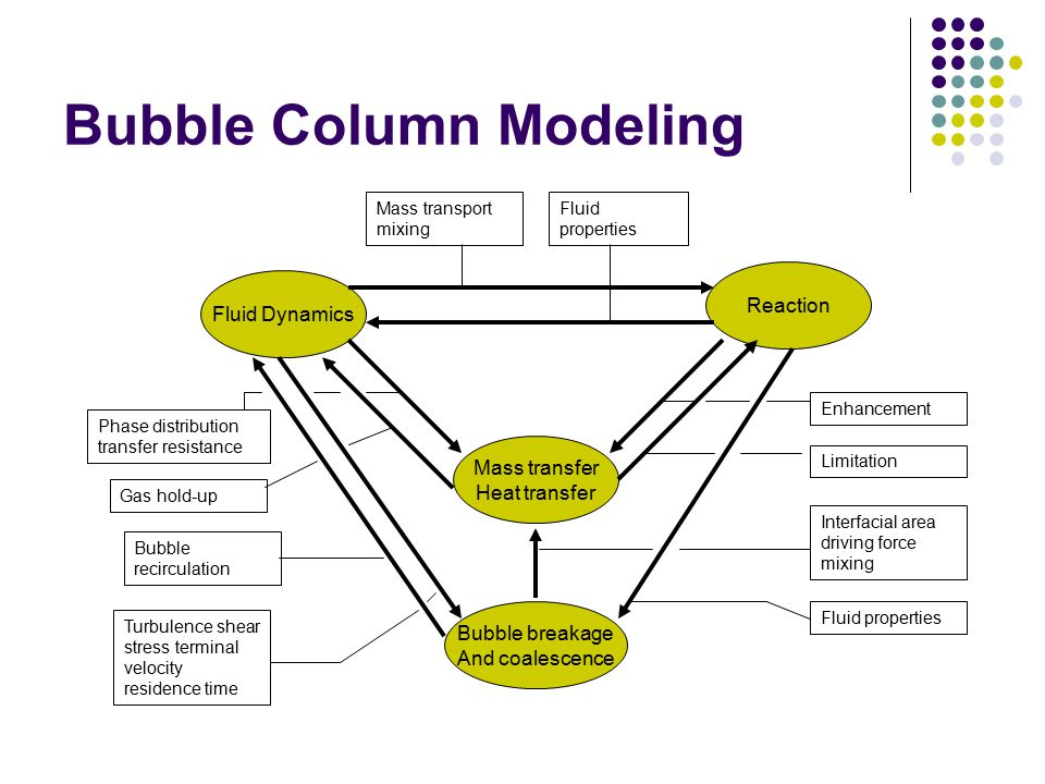 Bubble Column Modeling