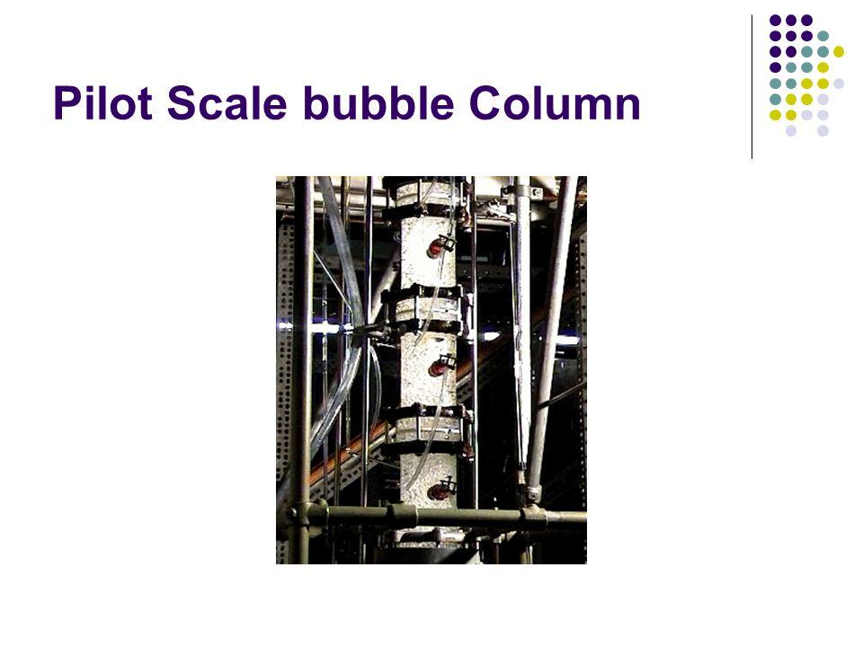 Pilot Scale bubble Column