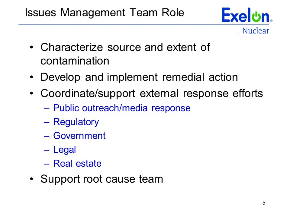 Issues Management Team Role