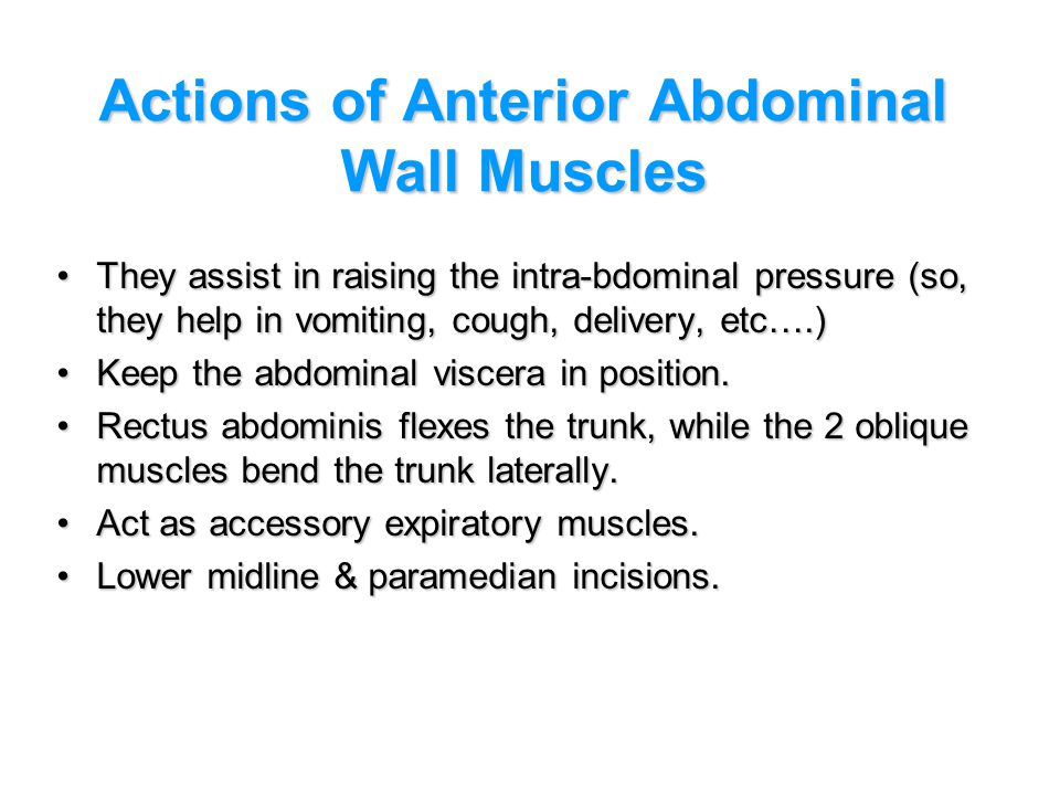 Actions of Anterior Abdominal Wall Muscles