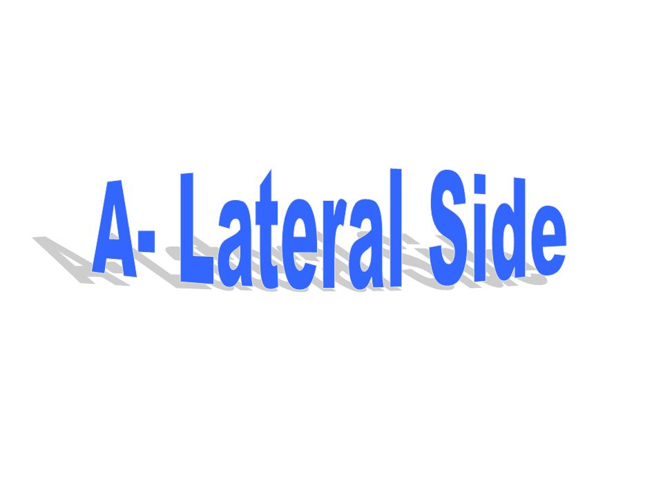 A- Lateral Side