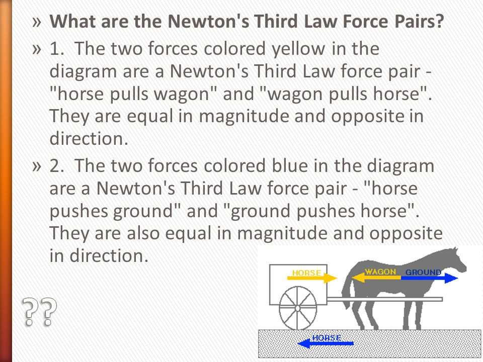 What are the Newton s Third Law Force Pairs