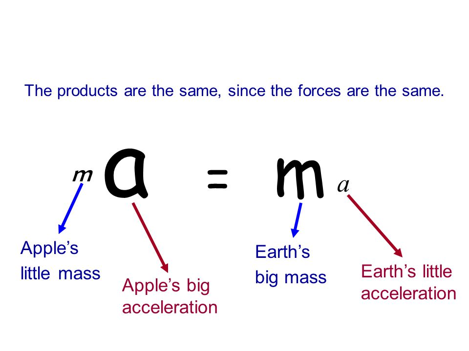a = m a m Apple's Earth's little mass big mass