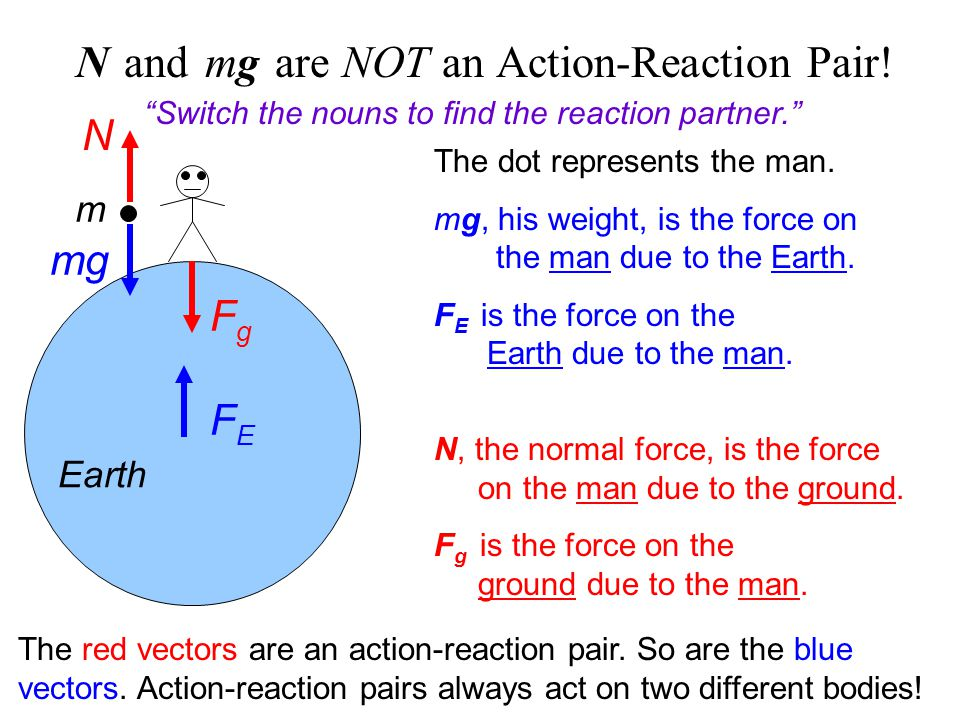 N and mg are NOT an Action-Reaction Pair!