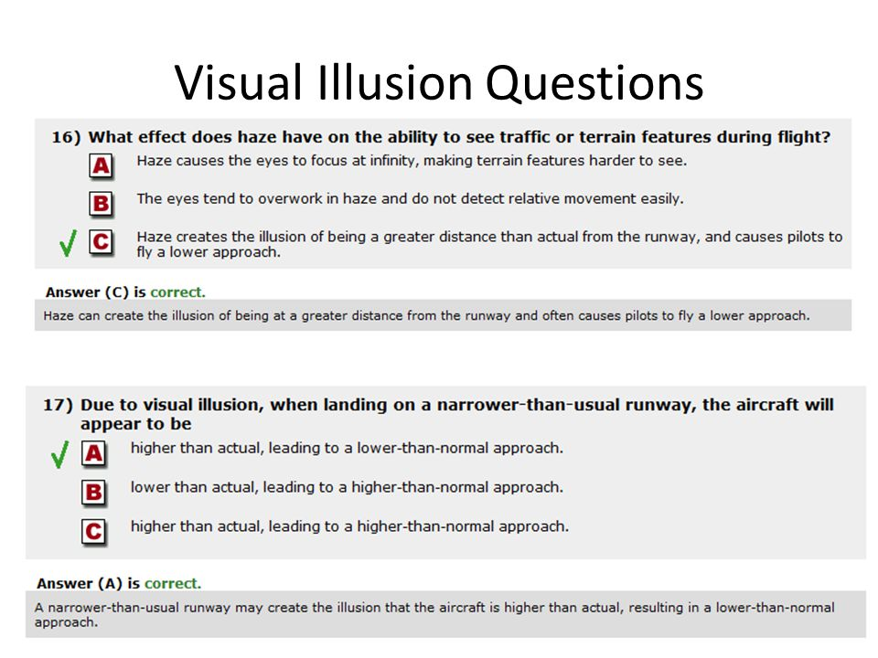 Visual Illusion Questions