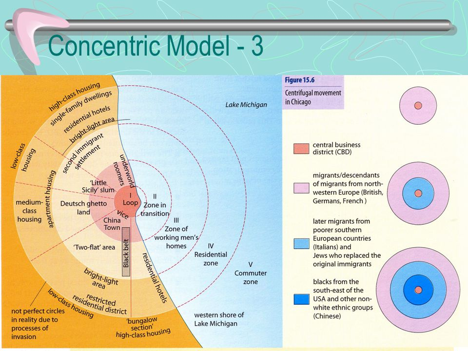 Concentric Model - 3