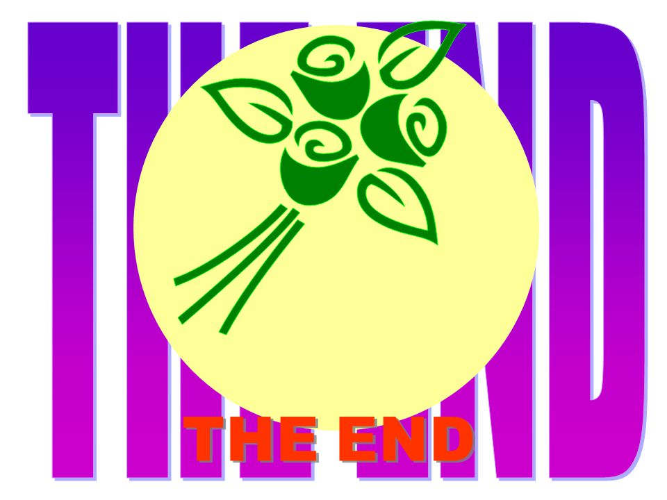 THE END Z THE END