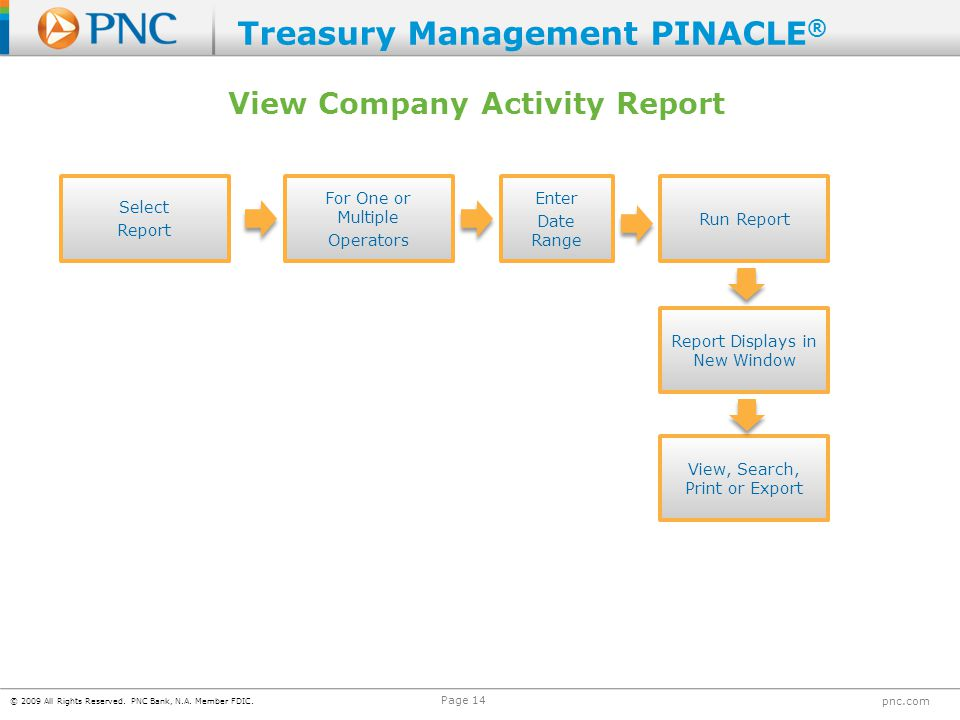 View Company Activity Report