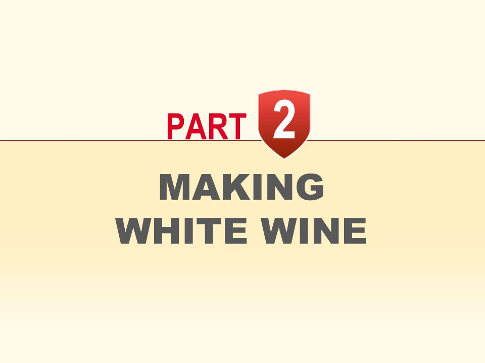 2 PART MAKING WHITE WINE