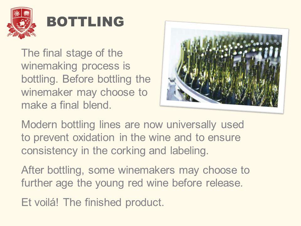 red wine making process pdf