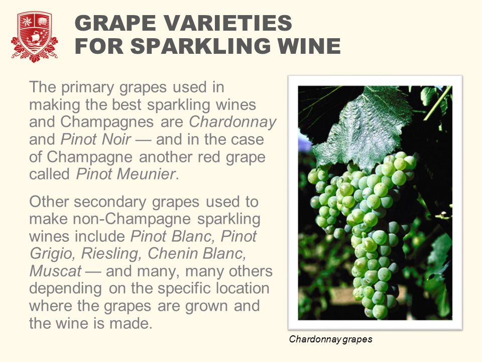 GRAPE VARIETIES FOR SPARKLING WINE