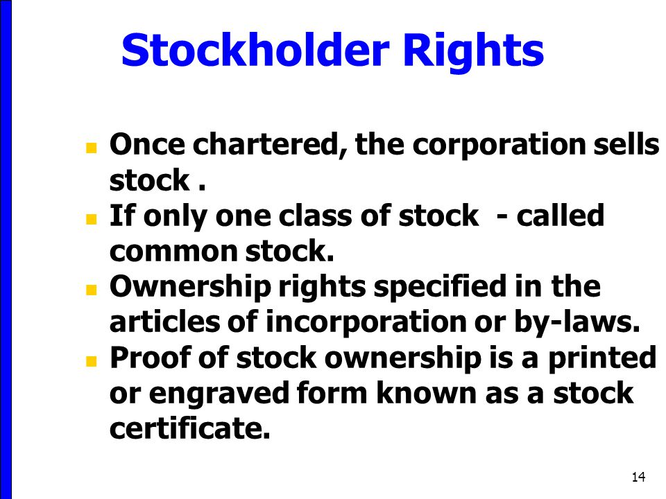 Stockholder Rights Once chartered, the corporation sells stock .