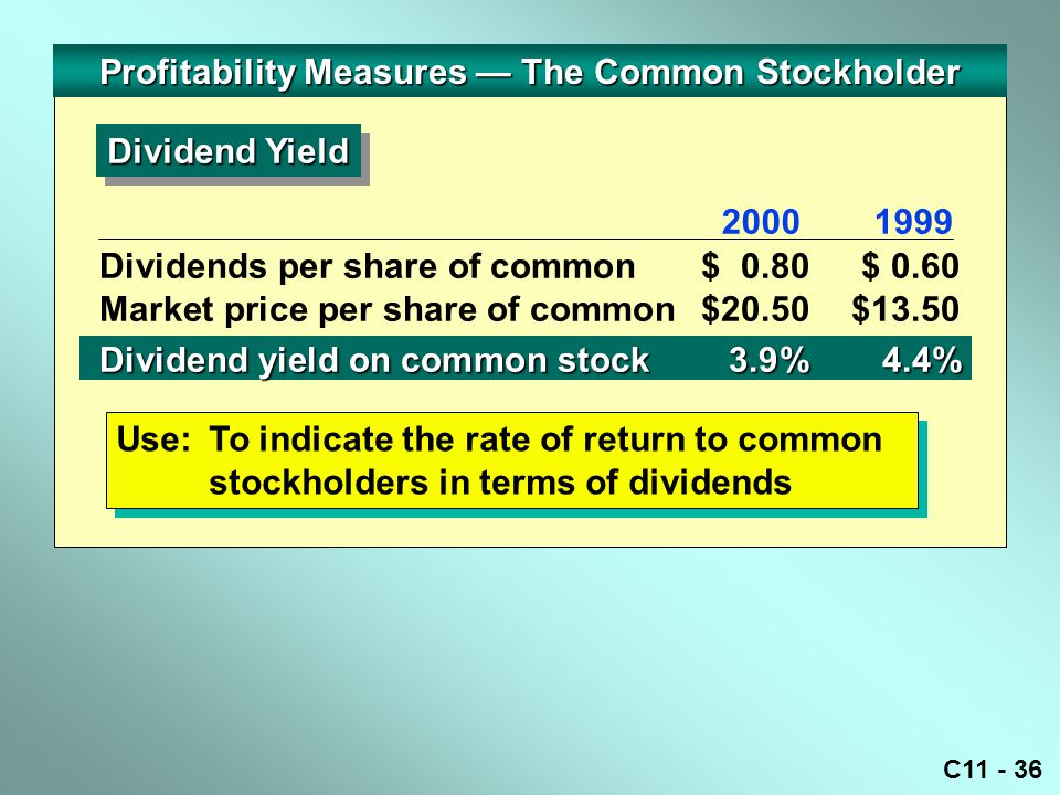 Profitability Measures — The Common Stockholder