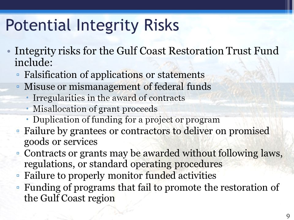Potential Integrity Risks