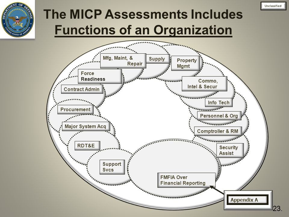 The MICP Assessments Includes Functions of an Organization