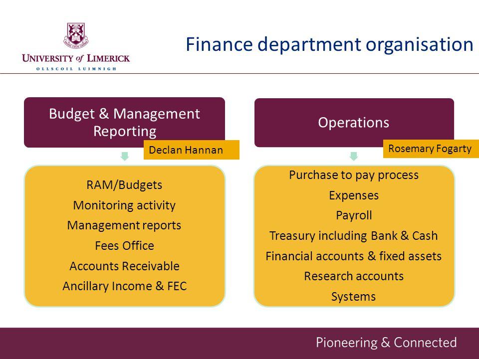 Finance department organisation